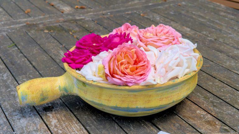 Aromatisches Hydrolat aus unseren Gartenrosen