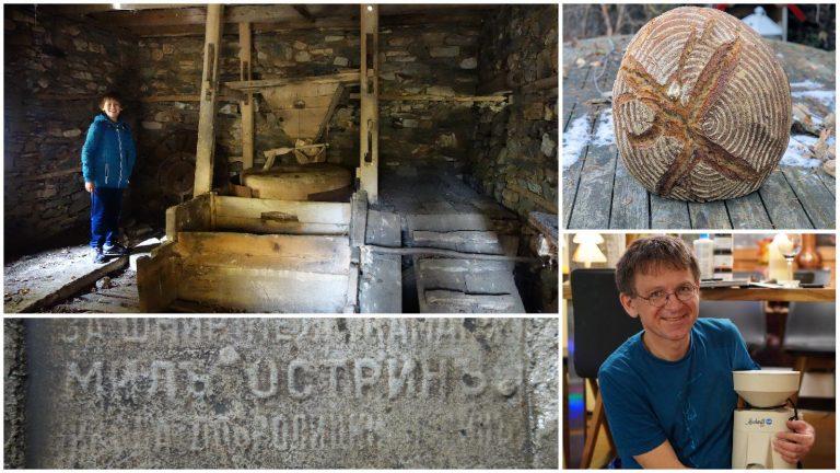 Brot, Gladstone und Barkanitza in der Mühle