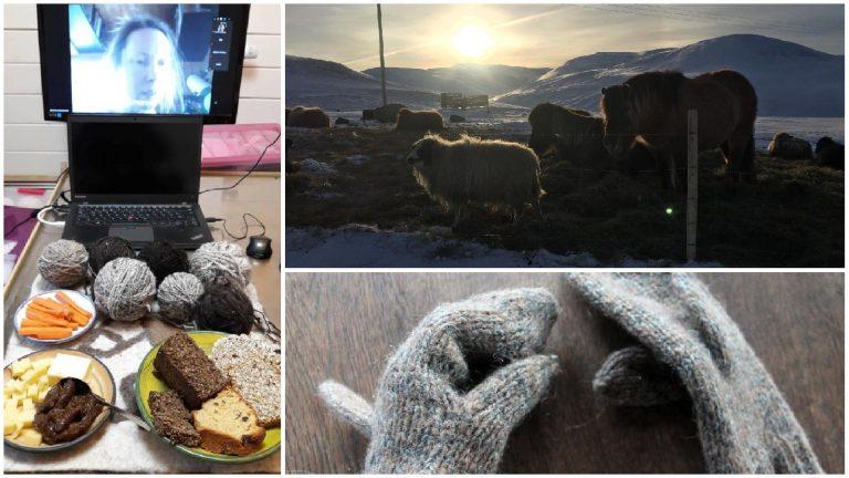 Erzählung über die Online-Rohwoll-Reise nach Island mit Karólína Í Hvammshlíð