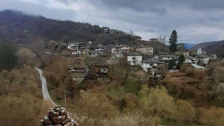 Tannenzapfen im winterlichen Dorf