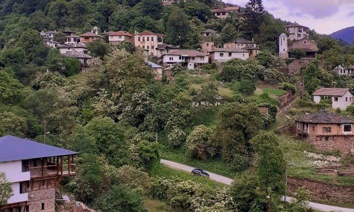 Среща с магарицата в Косово