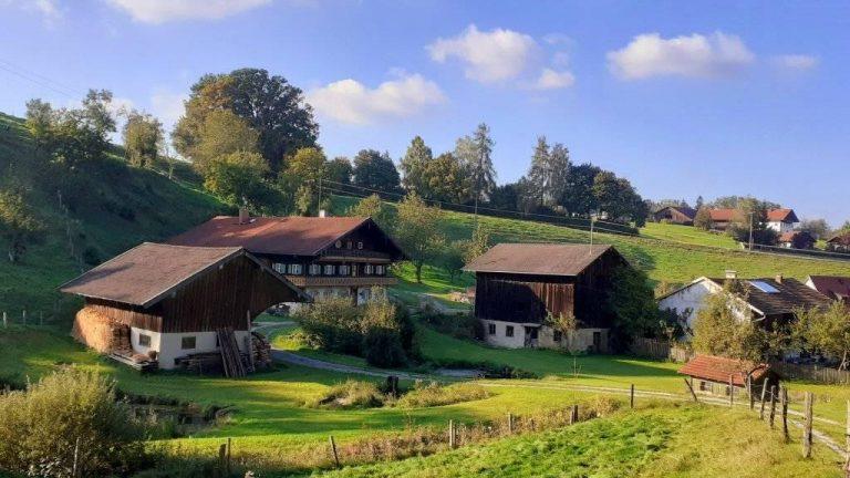 Гъбки, зайче и дядо от баварските гори